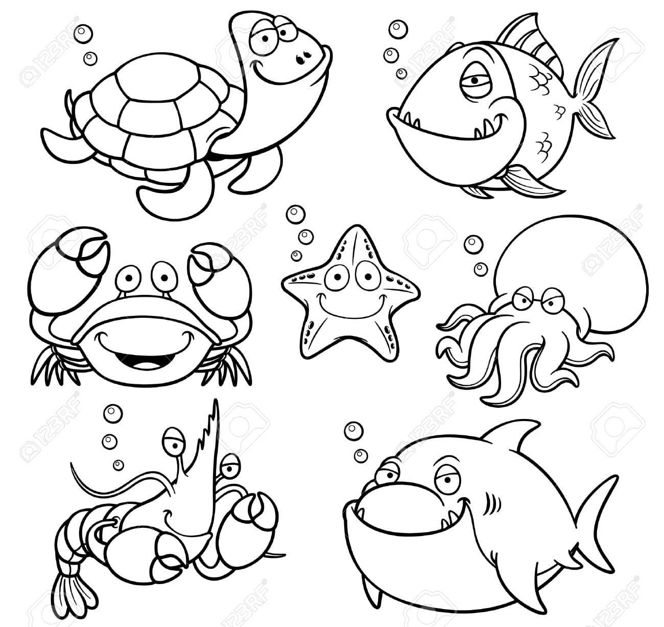 Animales marinos para colorear