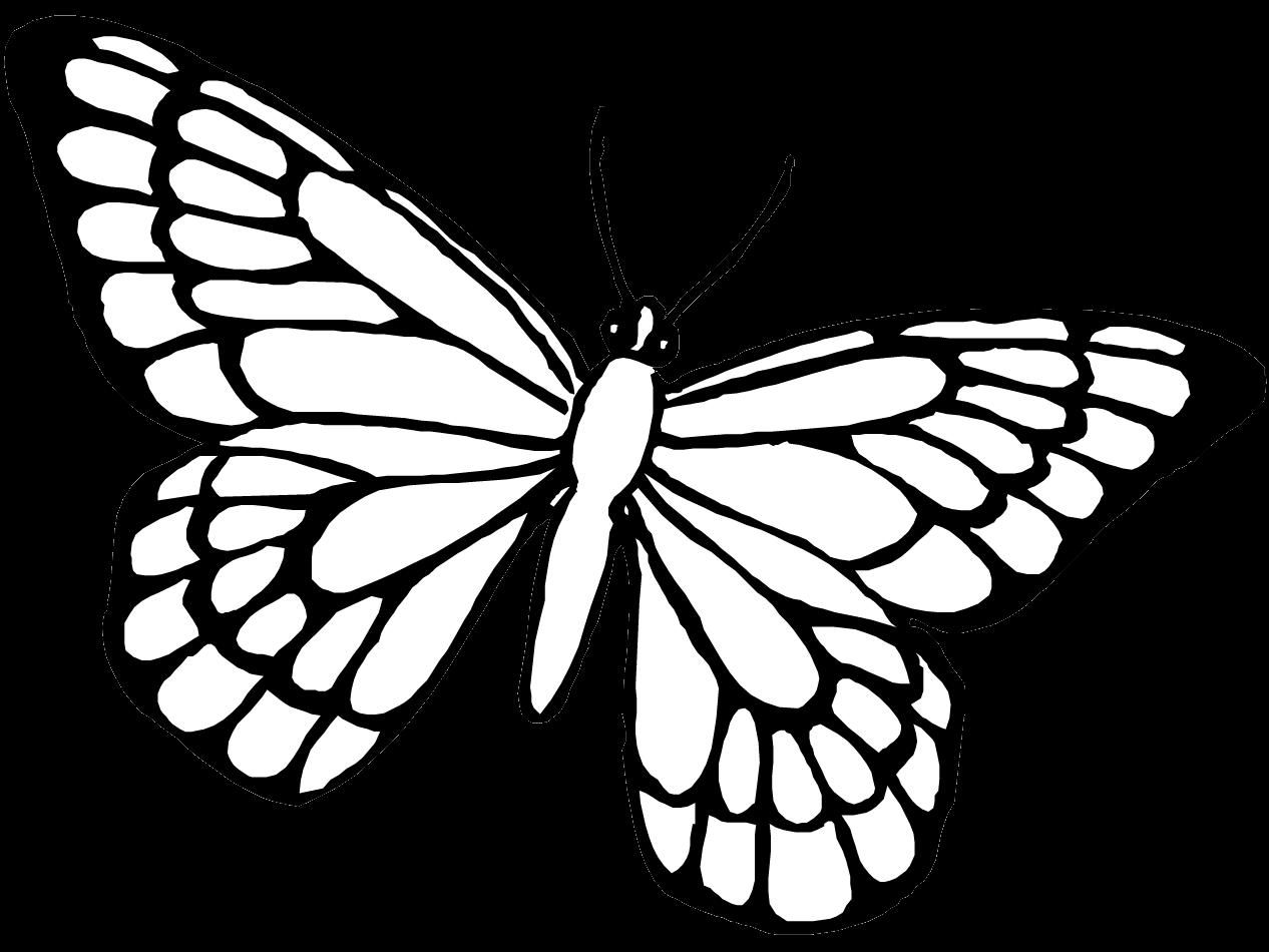 Dibujosfacileses Dibujos De Mariposas Para Colorear