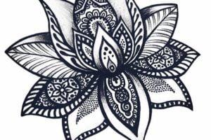 Dibujos Fáciles flor hermosa