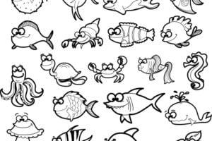Animales marinos dibujosfaciles.es