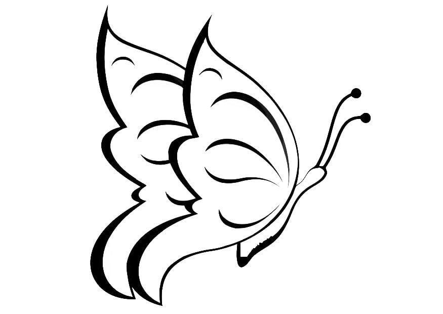 Mariposa www.dibujosfaciles.es