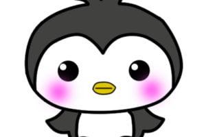 Pingu kawaii tierno