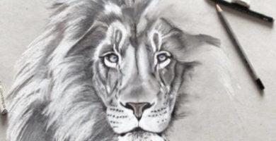 dibujo leon a lapiz